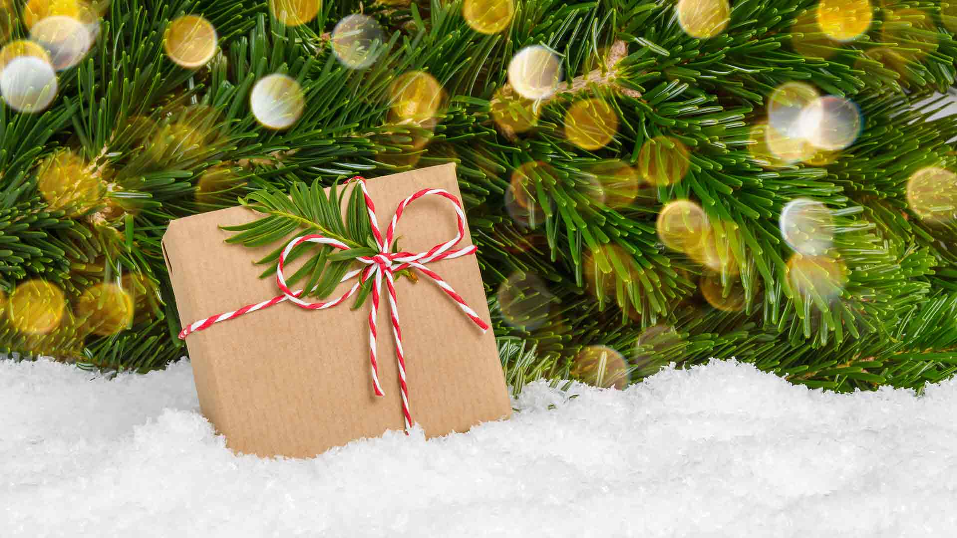 a ribboned brown box backdropped by a horizontal christmas tree